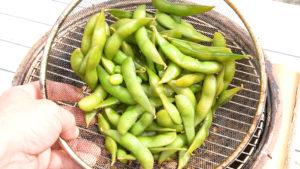 枝豆を燻製する。